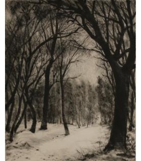 """ROCHE Marcel """"Forêt sous la neige"""" - Pointe sèche et eau forte signée."""